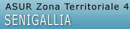 Il portale della Zona Territoriale n.4 di Senigallia